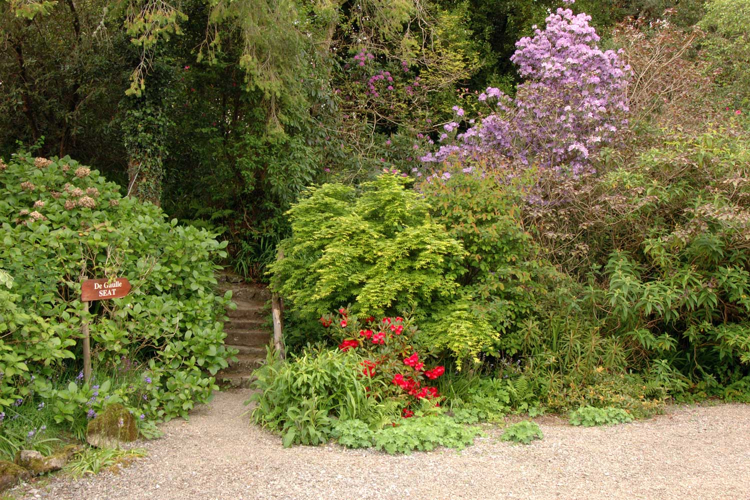 Cashel House Hotel and Gardens Flowers - Visit Galway