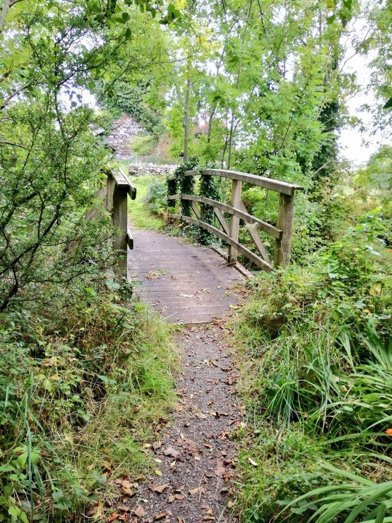 Clonbur Woodland Bridge - Visit Galway