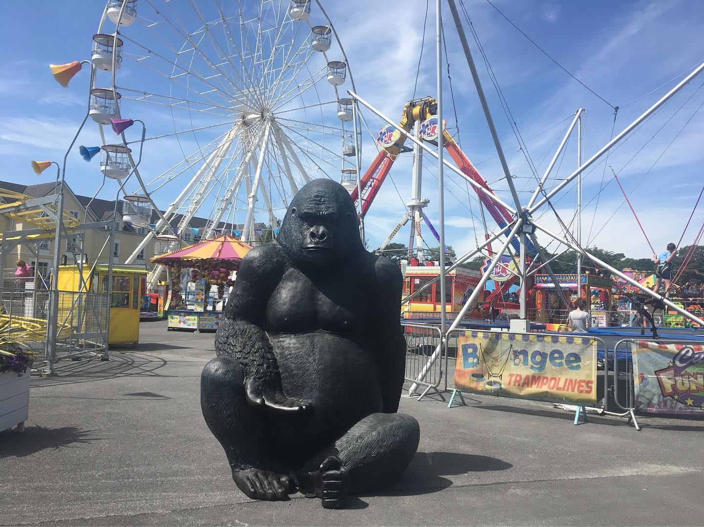Curry's Fun Park in Galway - Visit Galway