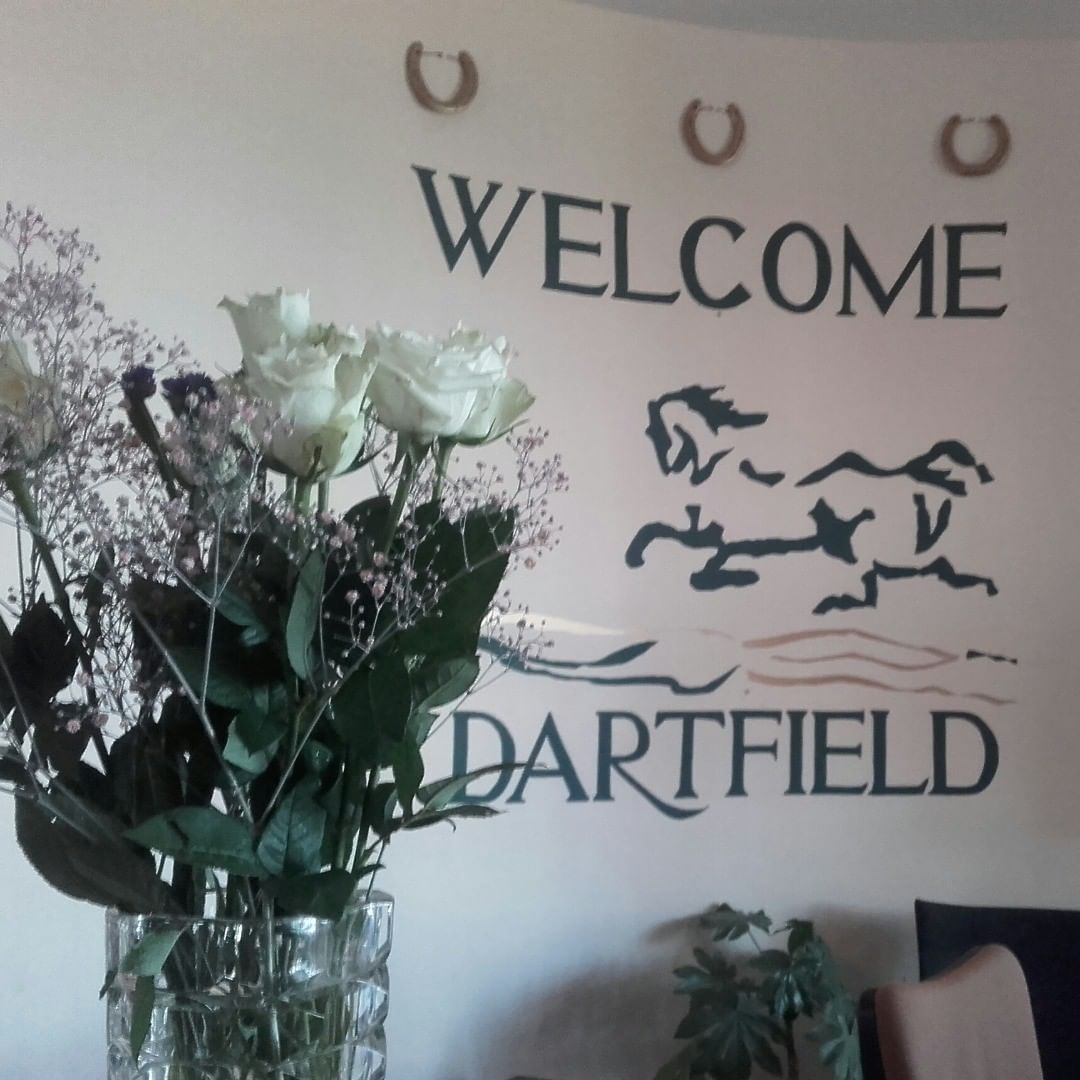 Dartfield Horse Museum and Heritage Centre Equestrian - Visit Galway