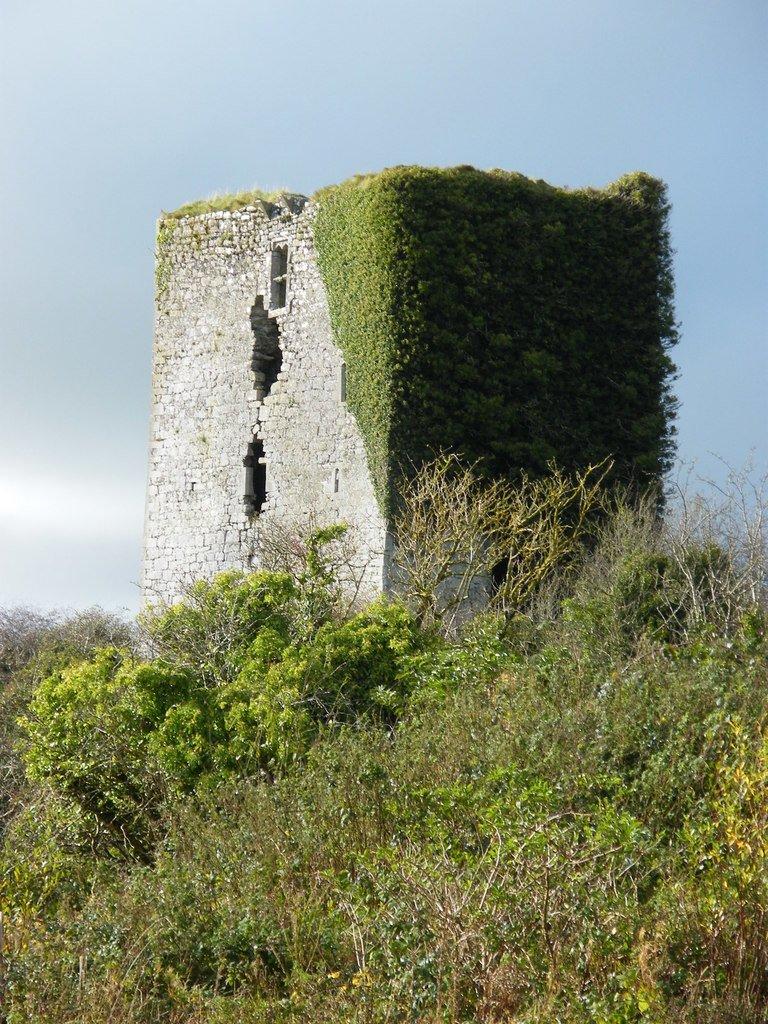Derrydonnell Castle Ruin - Visit Galway