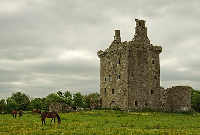 Derryhivenny Castle - Visit Galway