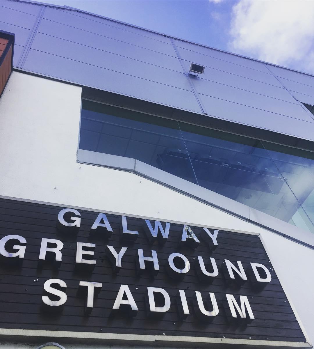 Dog Racing at Galway Greyhound Stadium - Visit Galway