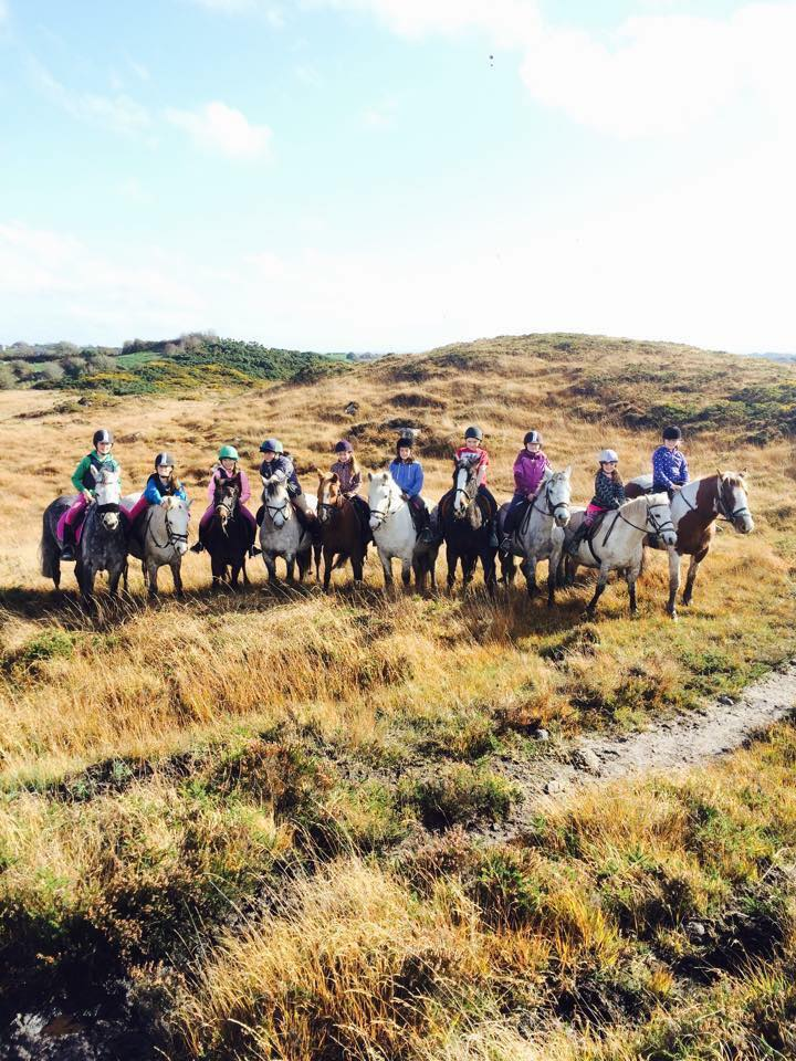 Feeney's Riding Stables Horse Riding - Visit Galway