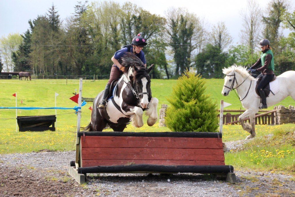 Flowerhill Equestrian Centre Jumping - Visit Galway