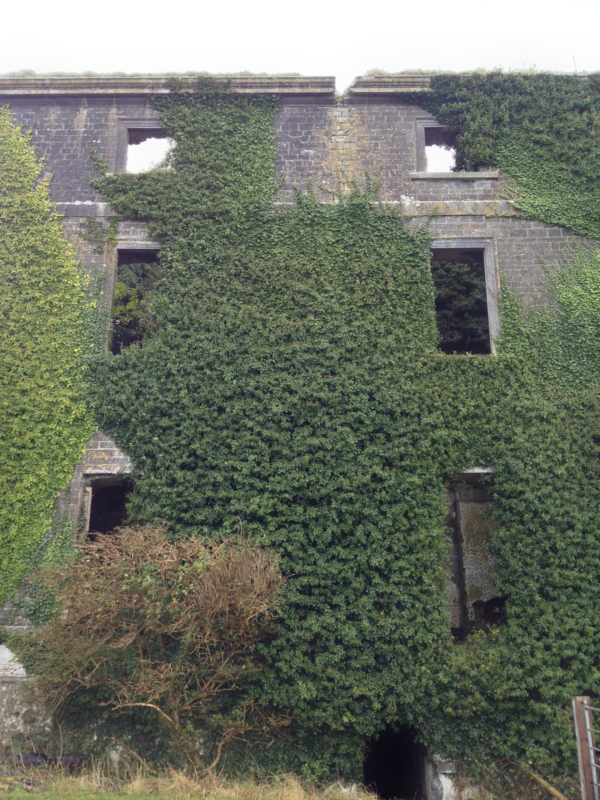 Ghost Near The Mantelpiece at Dunsandle House Ruins - Visit Galway