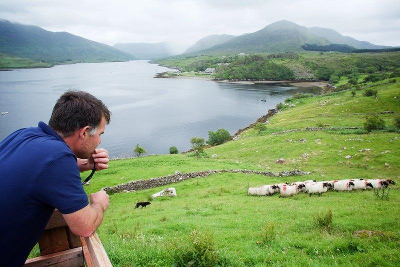 Killary Sheep Farm - Visit Galway