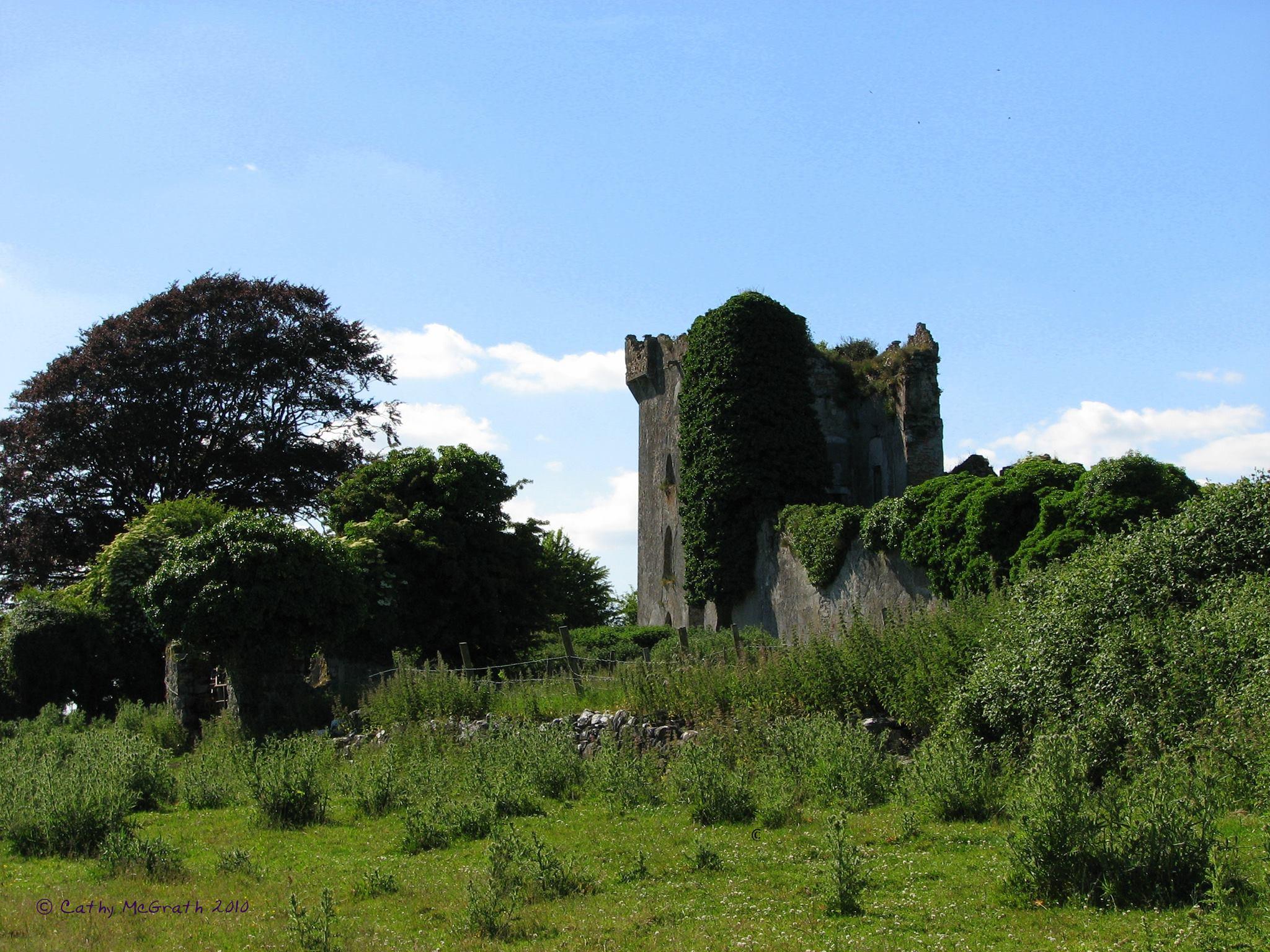 Lismore Castle in Galway - Visit Galway