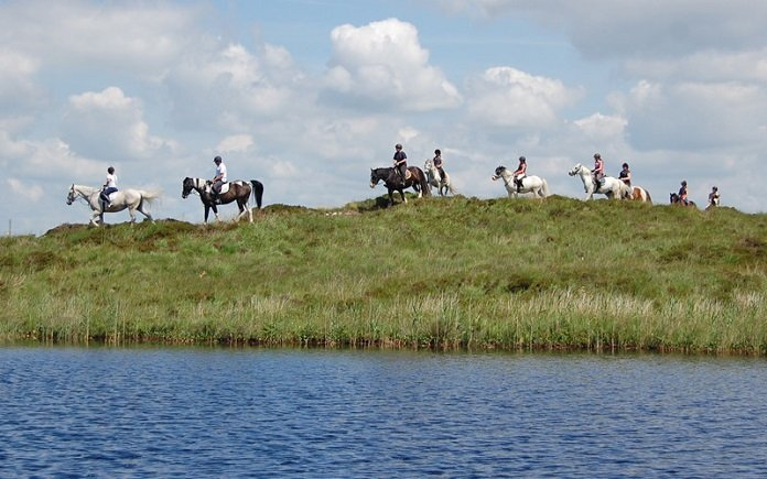 Moycullen Riding Centre in Galway - Visit Galway