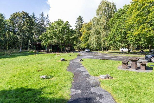 Portumna Forest Park - Visit Galway