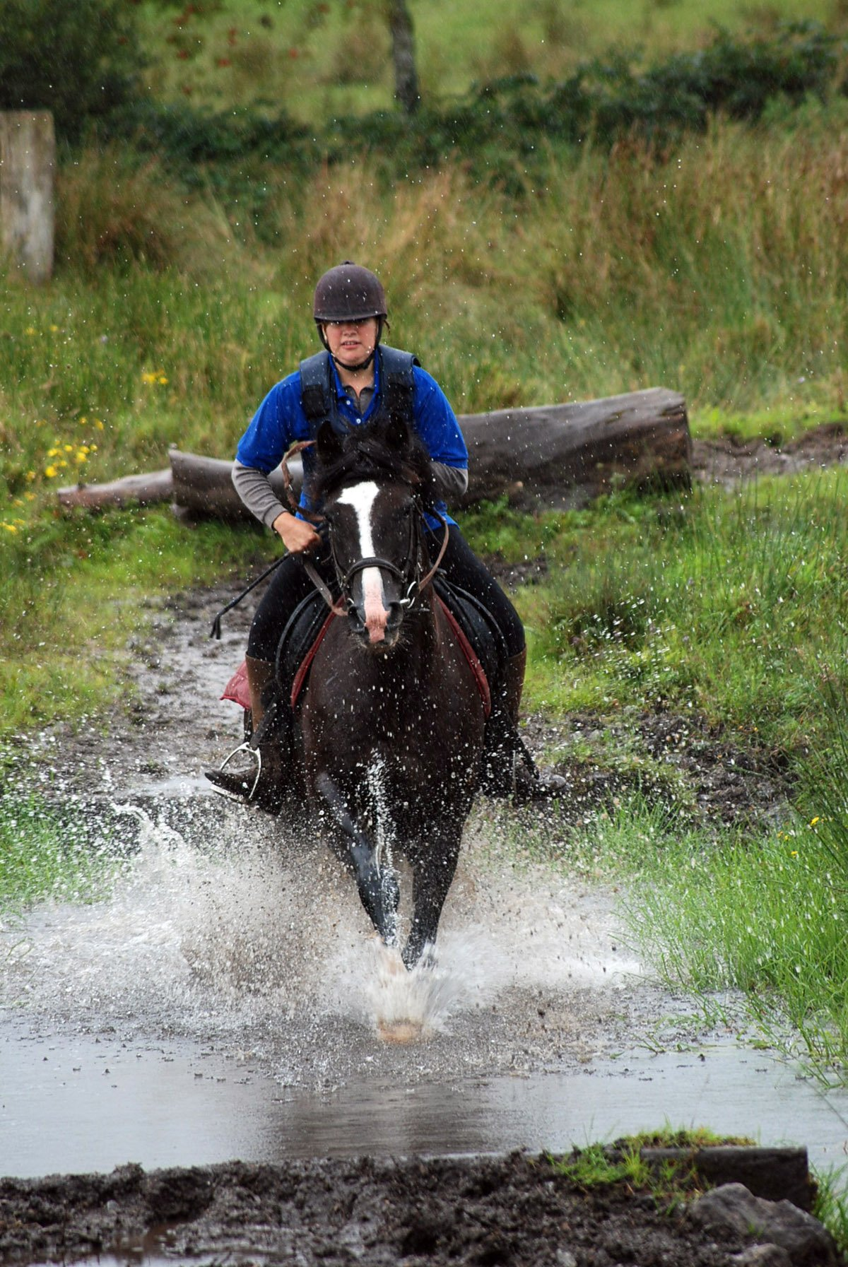 Slieve Aughty Centre Horse Riding and Jumping - Visit Galway