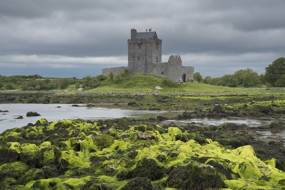 View of Dunguaire Castle in Kinvara - Visit Galway